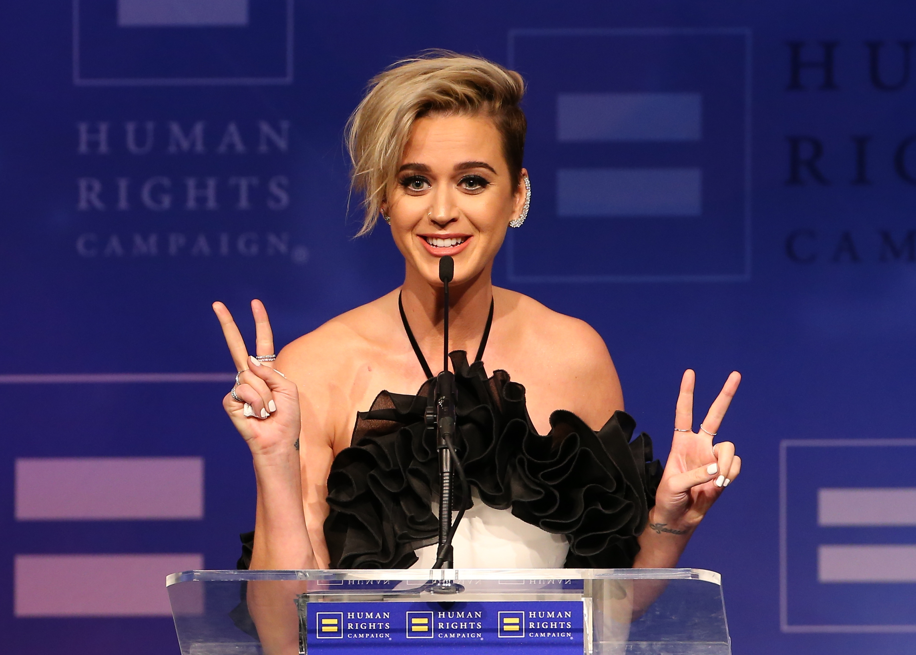 Human Rights Campaign's 2017 Los Angeles Gala Dinner - Show