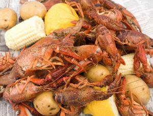Crawfish, potatoes, and corn
