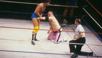 Hart Foundation v Rougeau Brothers