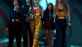 """""""Birds of Prey (And the Fantabulous Emancipation of One Harley Quinn)"""