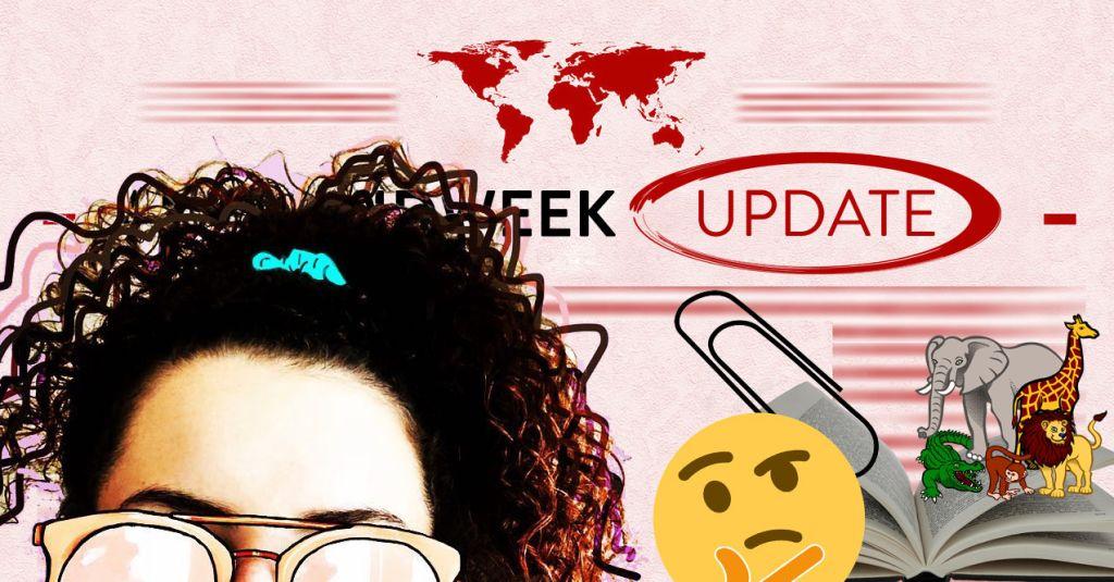 Ana's Midweek Update 042920